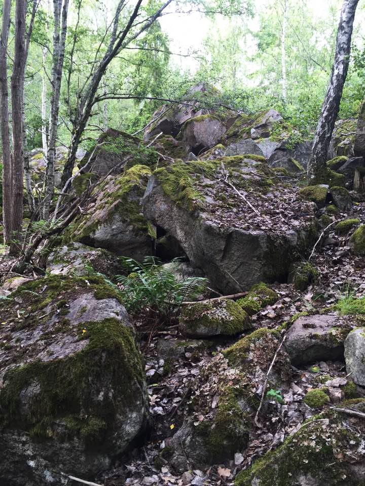 Unika de Geer-moräner omger koloniträdgårdsområdet
